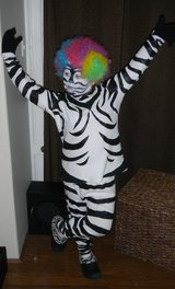 Hand Painted Marty Zebra Madagascar Afro Circus Costume in Kingwood, Texas