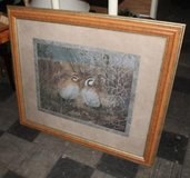 Framed Print - Quail in Montezuma, Georgia